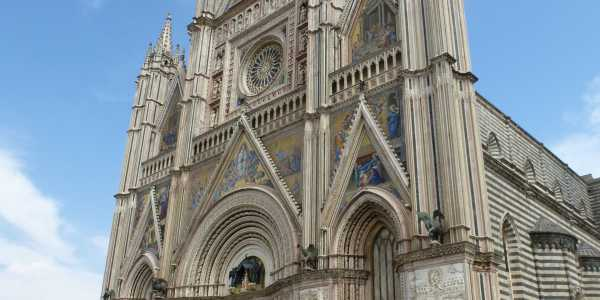 Orvieto and the olive oil: visit to the town and to a mill with tasting